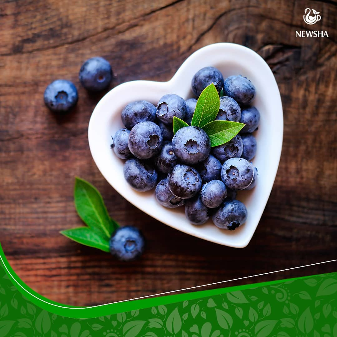 newsha blueberry herbaltea