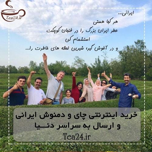 ارسال دمنوش لاغری نیوشا به خارج از ایران